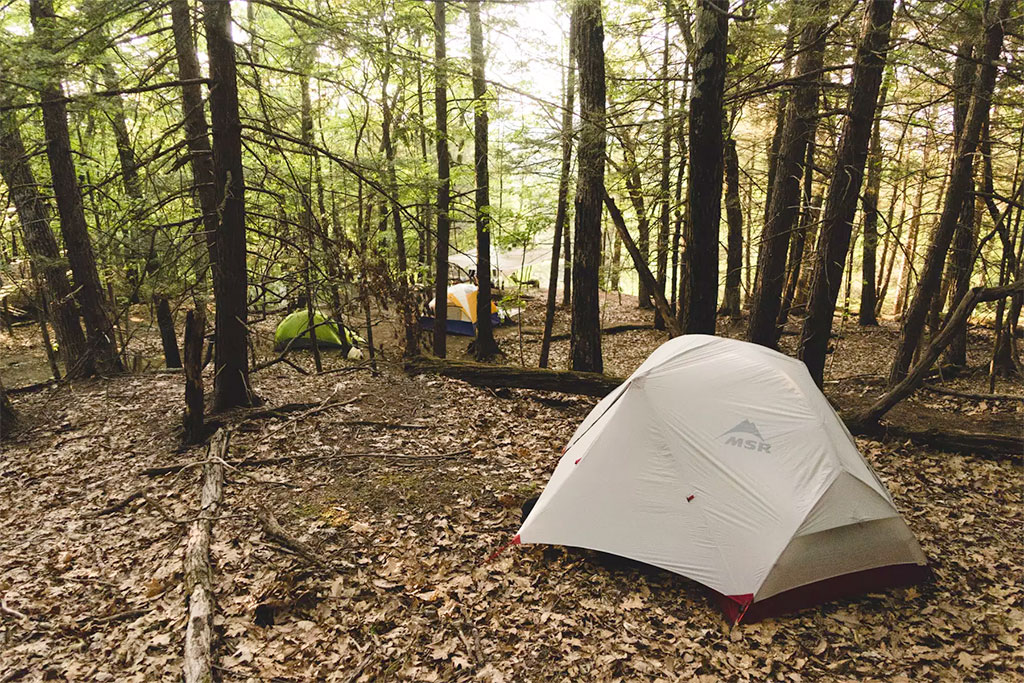 camping hipcamp magic forest farm Albany New York
